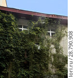 Купить «Стена дома в старом районе Самары (Россия)», фото № 28790908, снято 24 июня 2018 г. (c) oleg savichev / Фотобанк Лори
