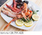 Купить «Seafood dish with langoustines, shrimps and clams», фото № 28791428, снято 26 января 2018 г. (c) Яков Филимонов / Фотобанк Лори