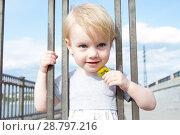 Купить «Маленькая девочка с цветком одуванчика смотрит сквозь решетку забора», фото № 28797216, снято 6 июня 2018 г. (c) Момотюк Сергей / Фотобанк Лори