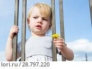 Купить «Маленькая девочка с цветком одуванчика смотрит сквозь решетку забора», фото № 28797220, снято 6 июня 2018 г. (c) Момотюк Сергей / Фотобанк Лори