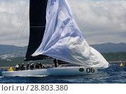 Купить «Sled, #06, Owner: Takashi Okura, Sail nr: USA5095, New York Yacht Club, Builder: Core Builders Composites, Rolex TP 52 World Championship, TP52 Super Serires...», фото № 28803380, снято 18 июля 2018 г. (c) age Fotostock / Фотобанк Лори