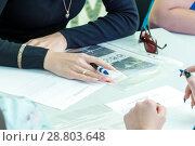 Купить «Russia, Samara, September 2017: the girl gives a theoretical exam to obtain the rights for driving a car. The text in Russian: examination ticket.», фото № 28803648, снято 16 сентября 2017 г. (c) Акиньшин Владимир / Фотобанк Лори