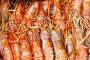Купить «Real shrimps.», фото № 28803776, снято 13 октября 2017 г. (c) Акиньшин Владимир / Фотобанк Лори