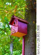 Купить «birdhouse on the tree», фото № 28803908, снято 31 августа 2017 г. (c) Guru3d / Фотобанк Лори
