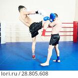 Купить «Thai boxer fighting at training ring», фото № 28805608, снято 5 февраля 2015 г. (c) Дмитрий Калиновский / Фотобанк Лори
