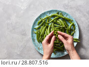 Купить «Female hands open young pea sticks. Natural green vegetables for cooking healthy food on a gray marble kitchen table with place fot text.», фото № 28807516, снято 15 мая 2018 г. (c) Ярослав Данильченко / Фотобанк Лори