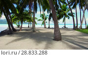 Купить «palm trees on tropical beach in french polynesia», видеоролик № 28833288, снято 1 июля 2018 г. (c) Syda Productions / Фотобанк Лори