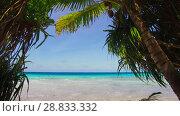 Купить «tropical beach with cocopalms in french polynesia», видеоролик № 28833332, снято 1 июля 2018 г. (c) Syda Productions / Фотобанк Лори