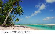 Купить «tropical beach with palm trees in french polynesia», видеоролик № 28833372, снято 1 июля 2018 г. (c) Syda Productions / Фотобанк Лори