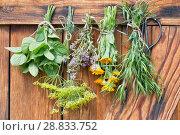 Травы сушатся. Стоковое фото, фотограф Альбина Ялунина / Фотобанк Лори