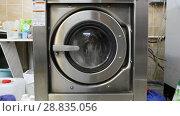 Купить «Automatic washing machines at laundry service», видеоролик № 28835056, снято 19 июня 2017 г. (c) Евгений Ткачёв / Фотобанк Лори