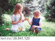 Купить «two little sisters in summer day», фото № 28841120, снято 22 сентября 2018 г. (c) Дарья Филимонова / Фотобанк Лори