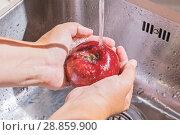 Купить «Female hands washing apple», фото № 28859900, снято 28 июля 2018 г. (c) Kira_Yan / Фотобанк Лори