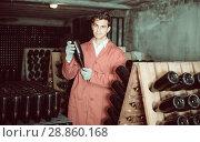 Купить «professional man wearing uniform working with bottle storage racks», фото № 28860168, снято 21 сентября 2016 г. (c) Яков Филимонов / Фотобанк Лори