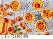 Купить «french summer dessert - Baked apricot clafoutis», фото № 28860608, снято 22 июля 2018 г. (c) Oksana Zh / Фотобанк Лори