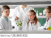Купить «students and teacher with plant at biology class», фото № 28869932, снято 19 мая 2018 г. (c) Syda Productions / Фотобанк Лори