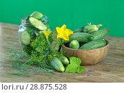 Купить «Свежий урожай огурцов с цветами», фото № 28875528, снято 31 июля 2018 г. (c) Наталия Кузнецова / Фотобанк Лори