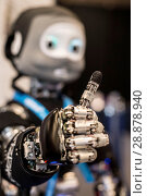 Купить «'Nikita' the robots name is an I Cub that is able to track objects and react, on show from Edinburgh centre of Robotics at Heririot Watt University at...», фото № 28878940, снято 22 марта 2017 г. (c) age Fotostock / Фотобанк Лори