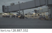 Купить «Luggage loading track at the Pulkovo airport in Saint-Petersburg», видеоролик № 28887332, снято 6 июня 2018 г. (c) Ирина Мойсеева / Фотобанк Лори