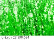 Купить «Green grass with dew drops. Solar glare. macro», фото № 28890684, снято 14 августа 2016 г. (c) Евгений Ткачёв / Фотобанк Лори