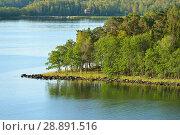 Купить «Green island in Baltic Sea. Seascape», фото № 28891516, снято 9 июля 2018 г. (c) Валерия Попова / Фотобанк Лори