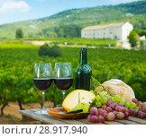 Купить «Red wine, cheese, bread and grapes with vineyard», фото № 28917940, снято 20 августа 2018 г. (c) Яков Филимонов / Фотобанк Лори
