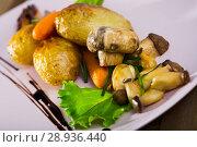 Купить «Grilled mushrooms with vegetables», фото № 28936440, снято 23 апреля 2019 г. (c) Яков Филимонов / Фотобанк Лори