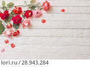 Купить «roses on white wooden background», фото № 28943284, снято 9 августа 2018 г. (c) Майя Крученкова / Фотобанк Лори