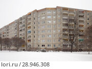 Купить «Berlin, Germany, monument protected housing estate Ernst-Thaelmann-Park in Berlin-Prenzlauer Berg», фото № 28946308, снято 6 января 2016 г. (c) Caro Photoagency / Фотобанк Лори