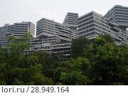 Купить «Singapore, Republic of Singapore, The Interlace», фото № 28949164, снято 14 декабря 2017 г. (c) Caro Photoagency / Фотобанк Лори