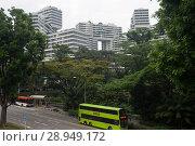 Купить «Singapore, Republic of Singapore, The Interlace», фото № 28949172, снято 14 декабря 2017 г. (c) Caro Photoagency / Фотобанк Лори