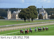 Купить «Chantilly, France, horses and jockeys during a gallop race in front of the castle», фото № 28952708, снято 30 сентября 2017 г. (c) Caro Photoagency / Фотобанк Лори