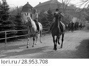 Купить «Studded Graditz, horses are led by riders on a pasture», фото № 28953708, снято 11 мая 1982 г. (c) Caro Photoagency / Фотобанк Лори