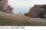 Купить «Hiker raises his hands», видеоролик № 28955040, снято 8 августа 2018 г. (c) Илья Шаматура / Фотобанк Лори