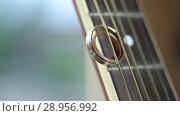 Купить «Gold Wedding Rings macro closeup shoot diamon Jewellery», видеоролик № 28956992, снято 9 августа 2018 г. (c) Aleksejs Bergmanis / Фотобанк Лори