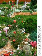 Купить «Landscape design. Flowers garden. Flowers in the garden after rain. Flowers macro. The care of garden plants», фото № 28957864, снято 30 июля 2018 г. (c) Евгений Глазунов / Фотобанк Лори