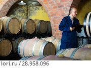 Купить «winery employee in cellar with woods», фото № 28958096, снято 16 августа 2018 г. (c) Яков Филимонов / Фотобанк Лори