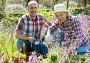 Купить «Couple looking after flowers in the garden», фото № 28958140, снято 16 августа 2018 г. (c) Яков Филимонов / Фотобанк Лори