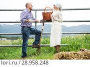 Two positive farm workers taking a pause. Стоковое фото, фотограф Яков Филимонов / Фотобанк Лори