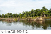 River in the far East. Стоковое фото, фотограф Павел Воробьев / Фотобанк Лори