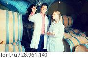 Купить «Two concentrated wine house workers checking quality of product», фото № 28961140, снято 21 сентября 2016 г. (c) Яков Филимонов / Фотобанк Лори