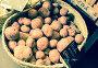 Купить «potatoes in wicker basket.», фото № 28961464, снято 16 августа 2018 г. (c) Татьяна Яцевич / Фотобанк Лори