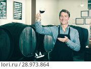 Купить «winemaker holding glass of wine in cellar», фото № 28973864, снято 18 декабря 2018 г. (c) Яков Филимонов / Фотобанк Лори