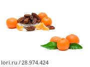 Купить «Tangerines and dates closeup on a white background», фото № 28974424, снято 19 мая 2014 г. (c) Ласточкин Евгений / Фотобанк Лори