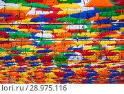 Купить «Аллея парящих зонтиков. 2018. Санкт-Петербург.», фото № 28975116, снято 18 августа 2018 г. (c) Сергей Афанасьев / Фотобанк Лори