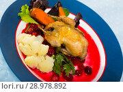 Купить «Fried quail with cranberry sauce and caramelized carrots, served with vegetables», фото № 28978892, снято 22 октября 2018 г. (c) Яков Филимонов / Фотобанк Лори