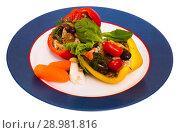 Купить «Stuffed peppers with mushrooms, rice, sesame, greens and vegetables», фото № 28981816, снято 21 января 2020 г. (c) Яков Филимонов / Фотобанк Лори