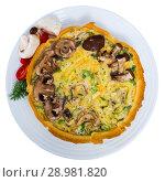 Купить «Quiche tart with mushrooms», фото № 28981820, снято 16 декабря 2018 г. (c) Яков Филимонов / Фотобанк Лори