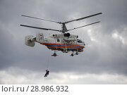 Купить «Спасатель десантируется с пожарно-спасательного вертолета Ка-32А МЧС России на аэродроме Мячково», фото № 28986932, снято 27 апреля 2018 г. (c) Free Wind / Фотобанк Лори