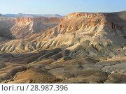 Fantastic views of Ein Avdat, Zin Valley. Negev, desert and semidesert region of southern Israel (2018 год). Стоковое фото, фотограф Валерия Попова / Фотобанк Лори
